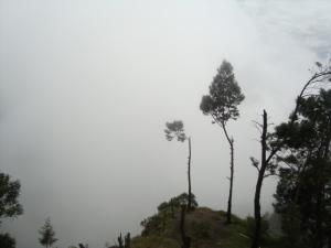 Pemandangan berkabut dari Puncak G. Sikunir Dieng